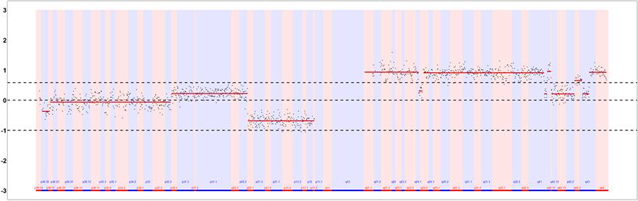 GenoCare肿瘤组织拷贝数变异(CNV)检测试剂盒