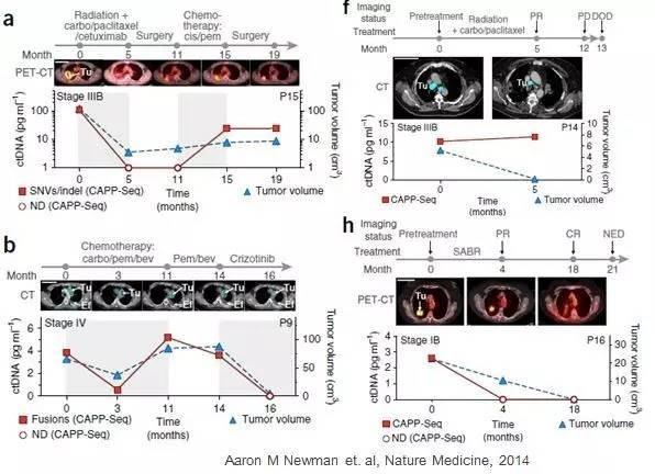 阎海教授:基因组学在肺癌精准诊疗的应用