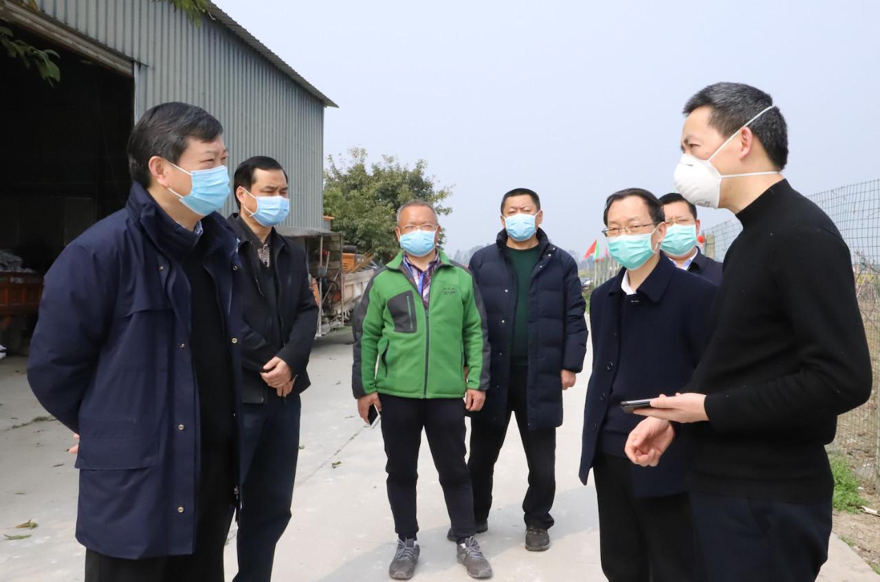成都市政协副主席杨建德一行莅临巨星农牧燎原猪场调研指导