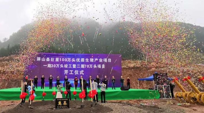 喜大普奔!屏山县亚博app下载100万头优质生猪产业项目开工!