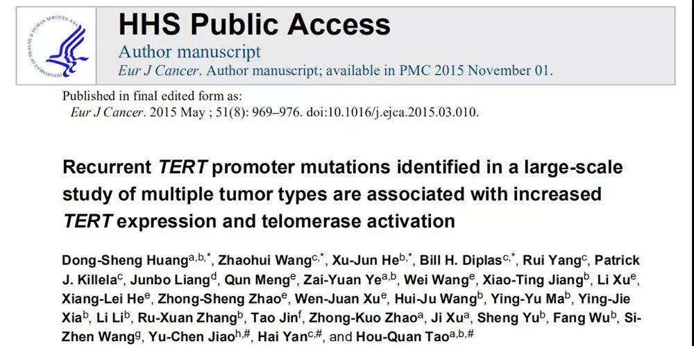探索不止!泛生子如何破解癌症基因组学的奥秘?