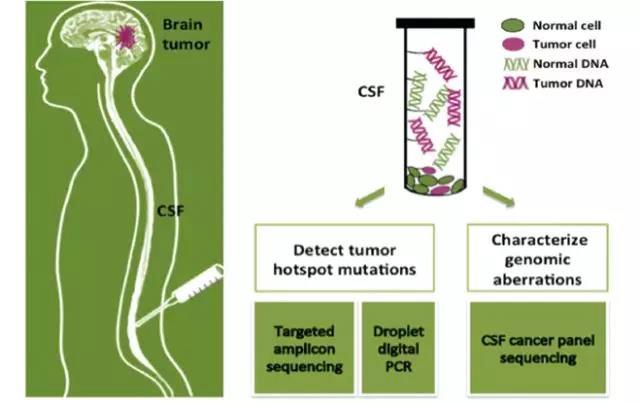 深度分享|阎海教授:基因检测指导非小细胞肺癌(NSCLC)的精准诊疗新探索