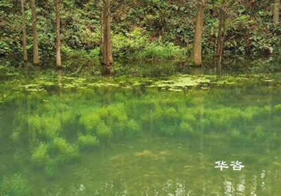 灌区实施改造后的水资源供需分析|专业水资源论证报告编制单位