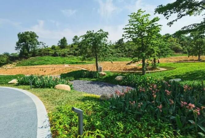 重磅!南山又新增一网红打卡地,西丽生态公园开园啦!!