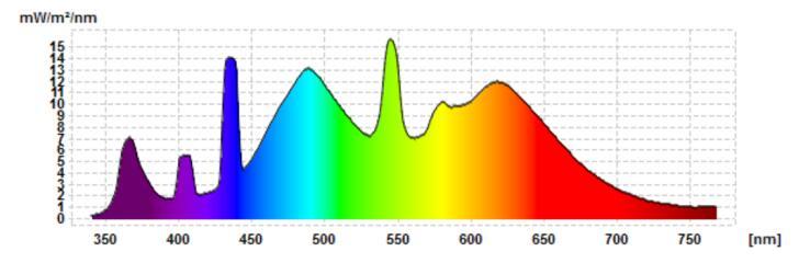 标准灯管D50