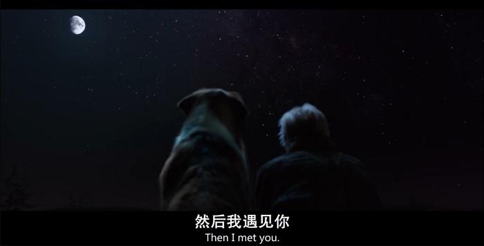 """影视投资:从""""狗仗人势""""到大彻大悟,一条狗的成长励志史"""