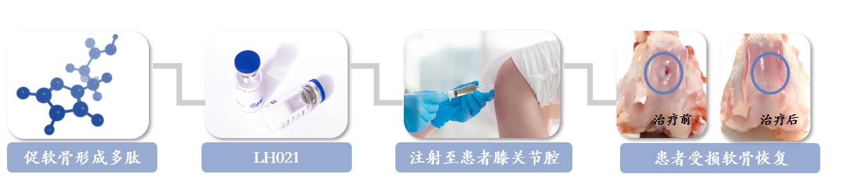 企讯 | 国内首个骨科疾病改善型药物,领晟自主开发1类新药LH021,已成功入组给药两例