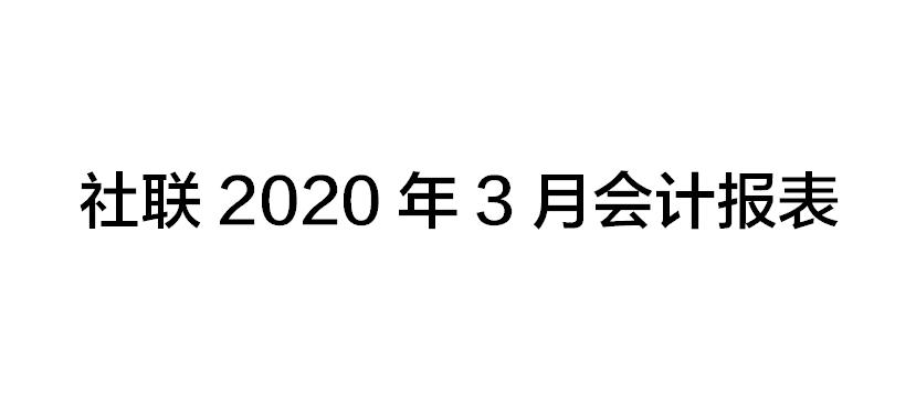 社联2020年3月会计报表