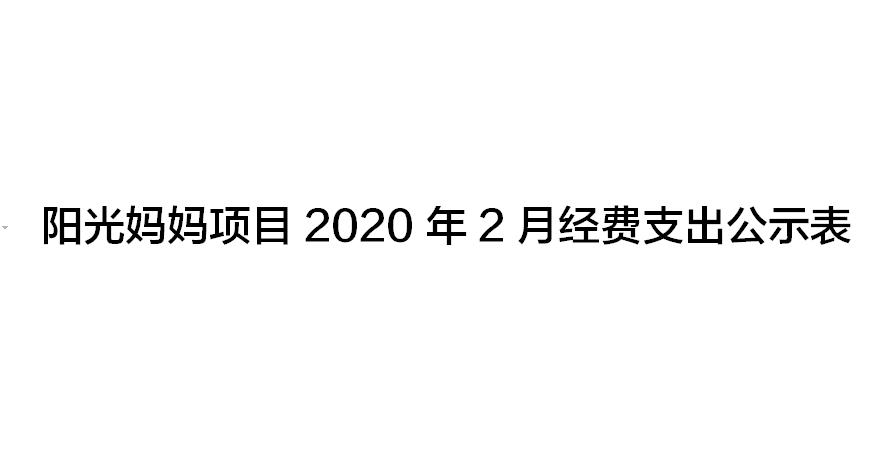 阳光妈妈项目2020年2月经费支出公示表