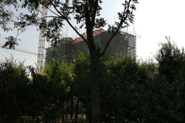 中储城邦栎树湾