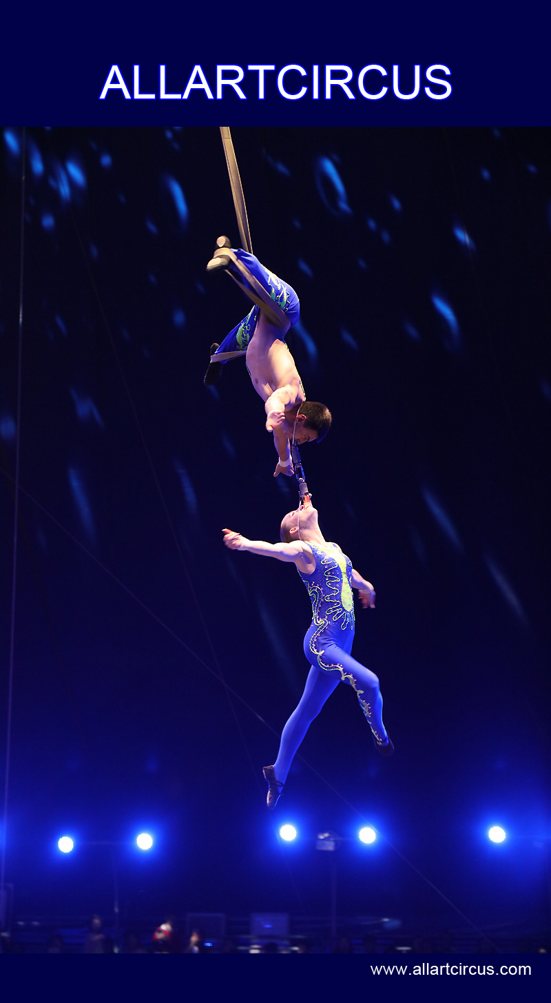 空中芭蕾——《Aerial ballet》