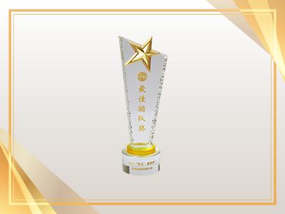 """2019""""张江·康桥杯""""集成电路技能大赛 最佳团队奖"""