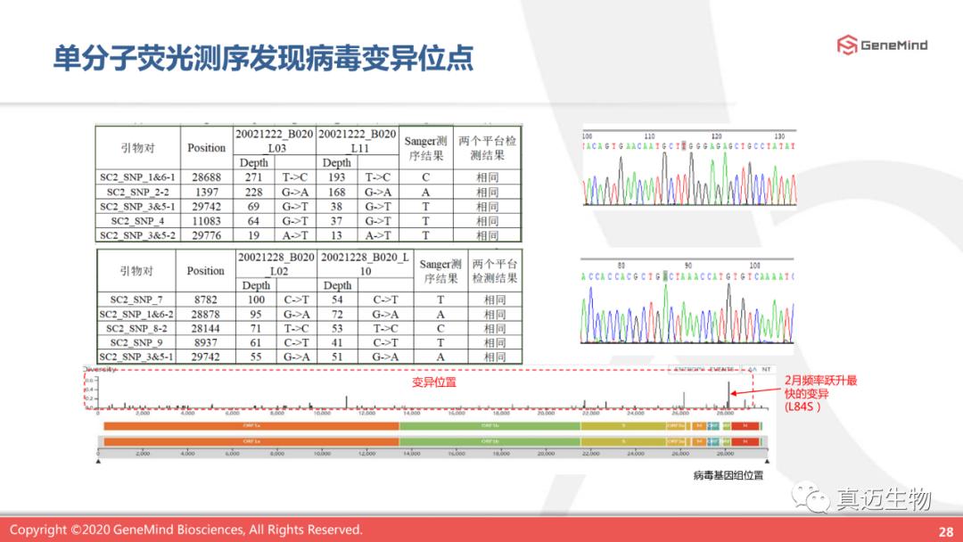课程回顾丨单分子基因测序:了解病毒,战胜病毒