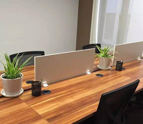 机关单位植物租赁设计方案