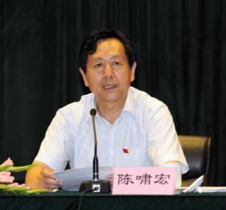 陳嘯宏              國家衛生計生委原副主任