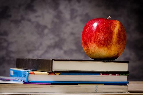职业生涯规划与高考志愿填报:需注意的因素