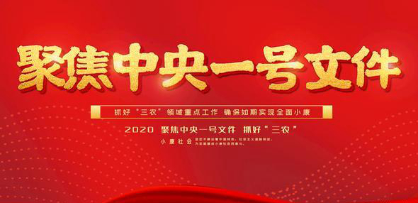 2020年中央一號文件
