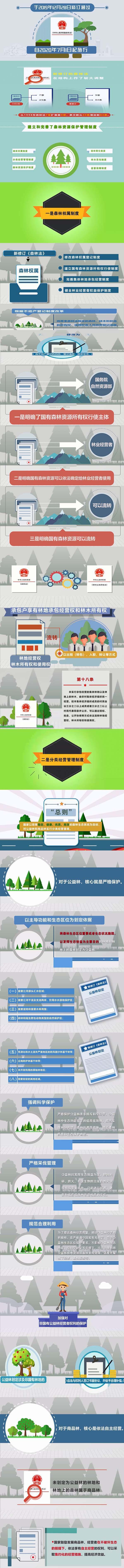 新《中华人民共和国森林法》7月1日起正式实施