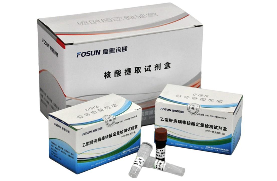 乙型肝炎病毒核酸定量检测试剂盒(PCR-荧光探针法)