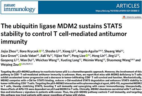 项目进展   亚盛医药MDM2-p53抑制剂APG-115增强T细胞介导性抗肿瘤免疫的研究成果荣登《自然免疫学》期刊