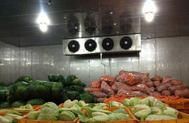 冷库管理软件在疫情下农产品冷库的重要性体现!