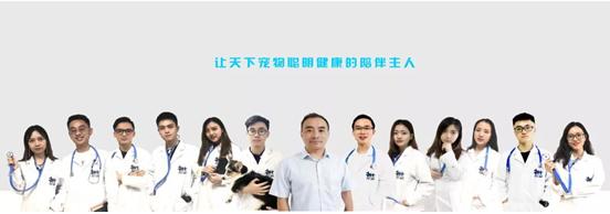 当宠物生病时,遇到一个在线宠物医生是什么体验?