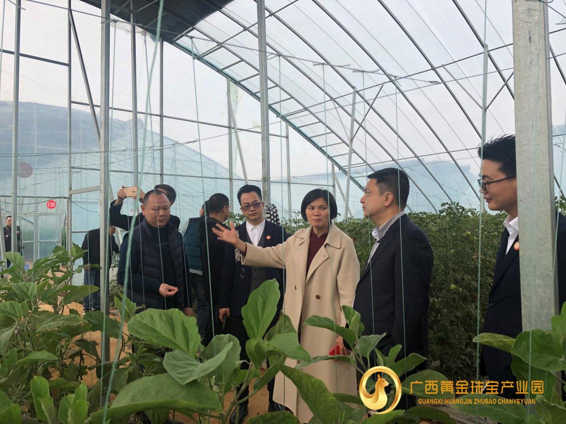 深圳珠宝加工企业组团赴广西平桂考察