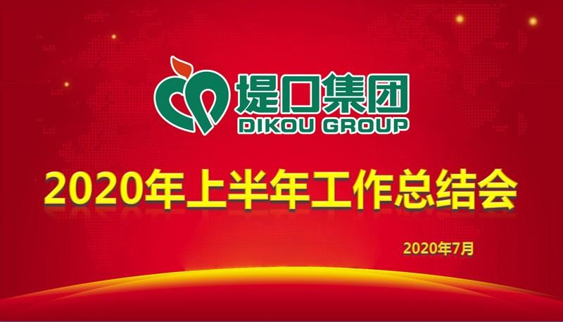 集团公司召开2020年上半年工作总结大会