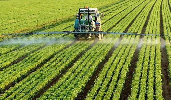 农业创新离不开这些方面!