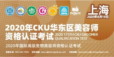 2020年 8月19日 上海