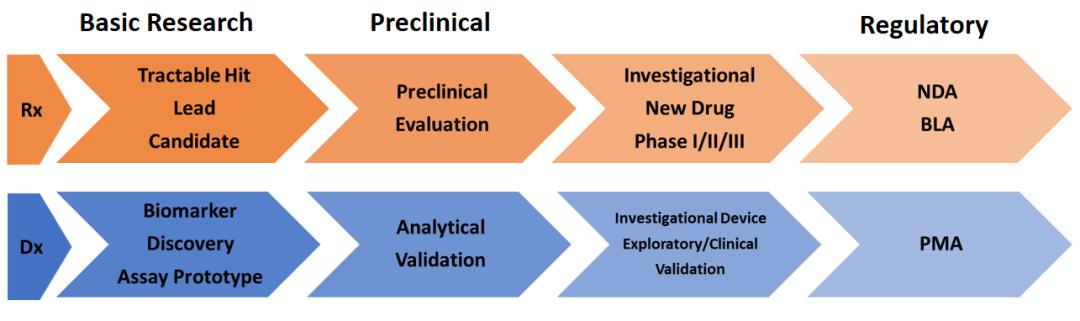 享·02期   国内伴随诊断发展趋势及路径浅析