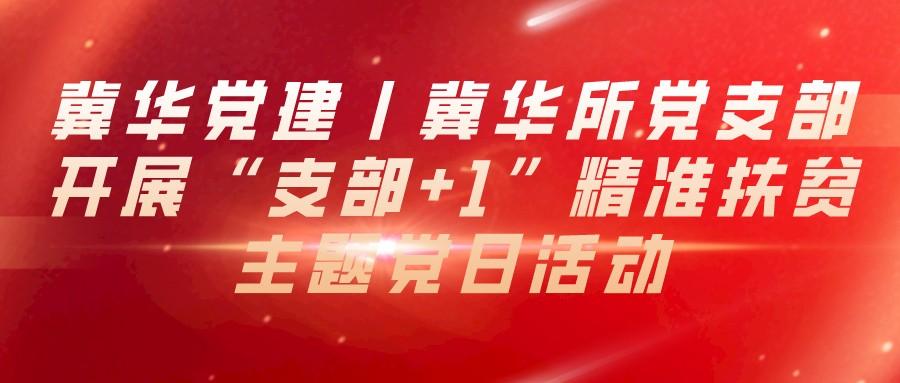"""冀华党建丨冀华所党支部开展""""支部+1""""精准扶贫主题党日活动"""