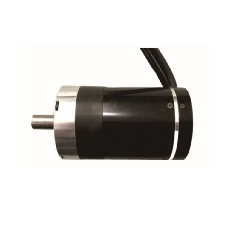 Channel Gate Movement Motor (60R)