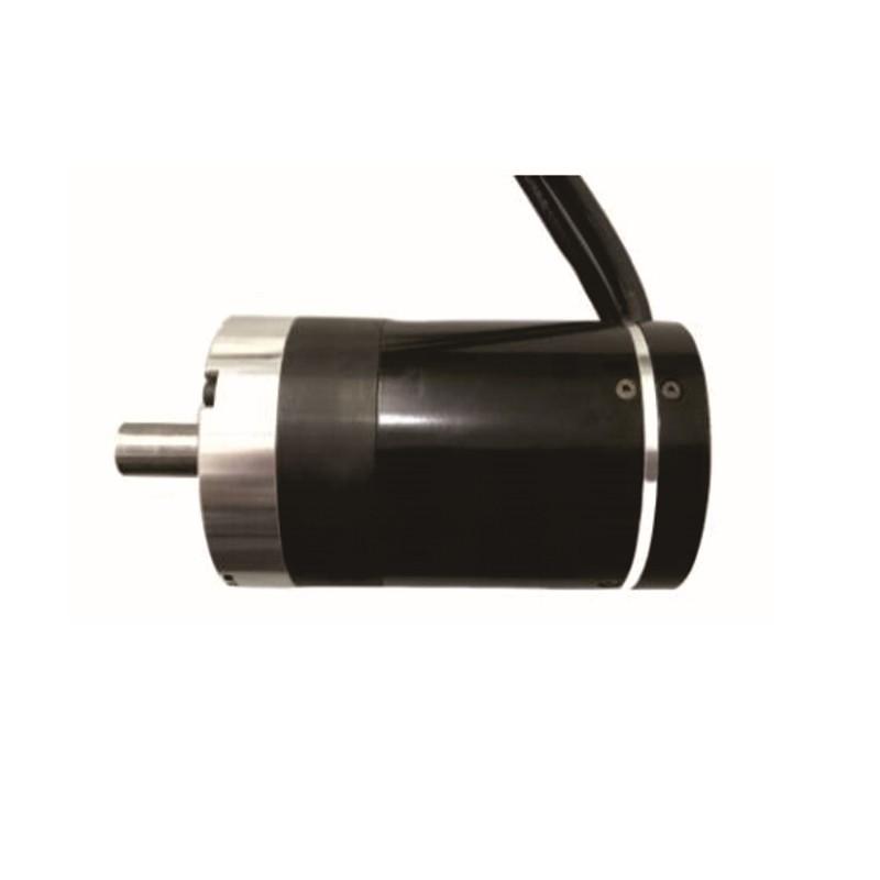Channel Gate Movement Motor (60R)