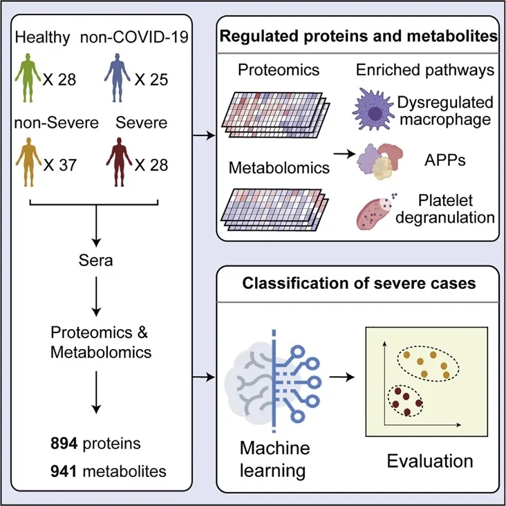 CELL | 最新突破:蛋白质组与代谢组联合分析筛选新冠肺炎血液生物标志物