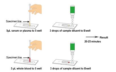 Dengue IgG/IgM Combo Rapid Test