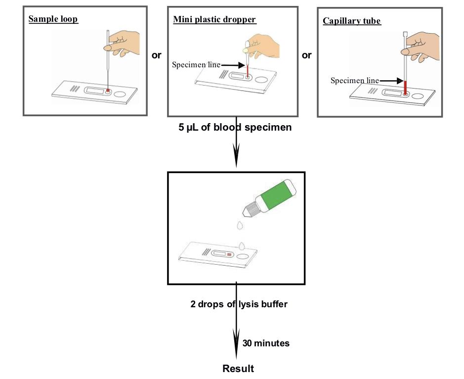 Malaria Pf Ag Rapid Test