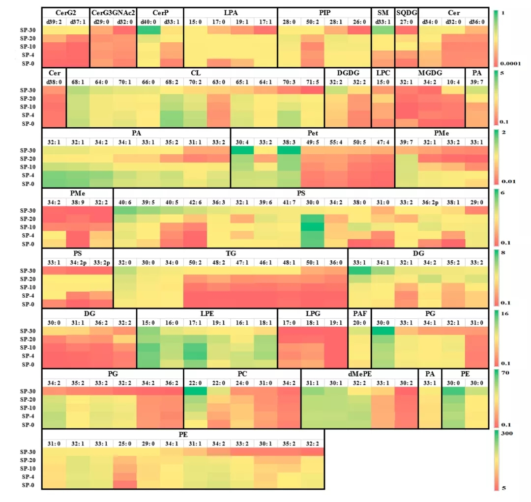 客户文献 | 使用UHPLC-ESI-MS/MS定量分析冷胁迫诱导腐烂希瓦氏菌的脂质组学变化