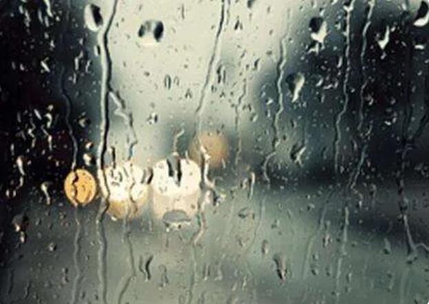 伟德体育app最新下载文化丨昨夜,一场大雨