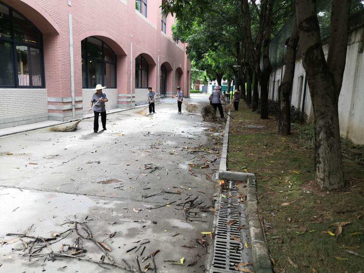 台风过后,谁来还我们漂亮如初的生活环境