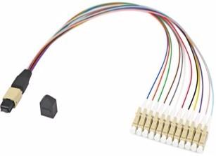 12芯 MPO转LC束状跳线