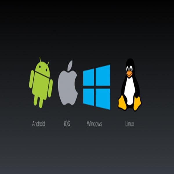 应用软件和操作系统的本质区别