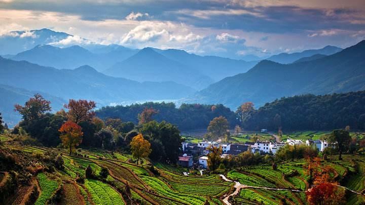 社科院发布《中国农村发展报告2020》