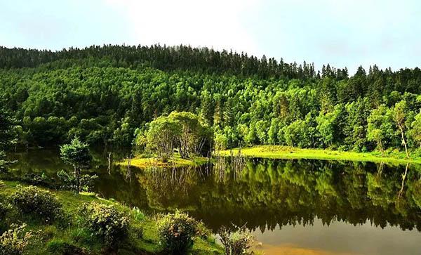 国家林草局:加快推进国家公园体制试点工作