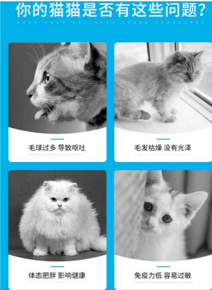 【宠物在线咨询】吃猫粮有哪些优势,有哪些可以选择?