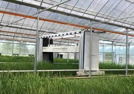 """""""红星杨科技""""智能科技引领现代农业自动化,助力高端装备"""