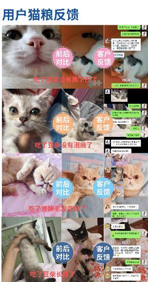 【宠物医生咨询】怎么在众多选择中给猫主子挑选不错的猫粮?