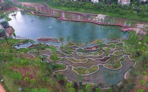 污水的自然处理工艺总结