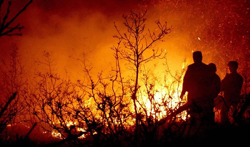 边境森林防火解决方案