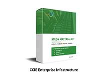 CCIE Enterprise Infrastructure Lab